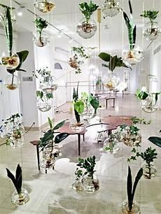 jardin d intérieur appartement 85532 le potager d int 233 rieur en 50 belles id 233 es archzine fr des plantes pour d 233 corer