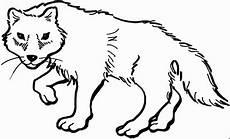 wolf 4 ausmalbild malvorlage tiere