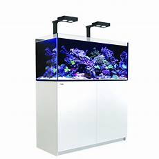 aquarium sea reefer deluxe 350 meuble blanc animal