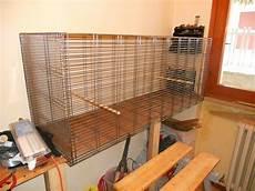 gabbia per scoiattoli fai da te gabbia comoda