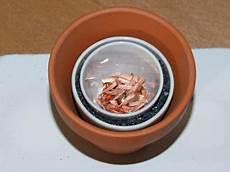 Metall In Der Mikrowelle - mosfetkiller de metalle schmelzen in der mikrowelle