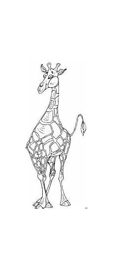 Malvorlagen Giraffe Um Giraffe Gluecklich Ausmalbild Malvorlage Tiere