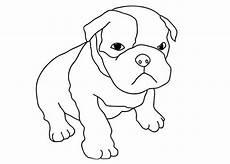 Ausmalbilder Hunde Welpen Malvorlagen Zum Drucken Ausmalbild Welpen Kostenlos 1