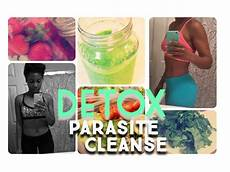 detox parasite cleanse how i jump started my weight loss