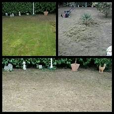 Rasen Vertikutieren Und Nachs 228 En Im Herbst Vertikutieren
