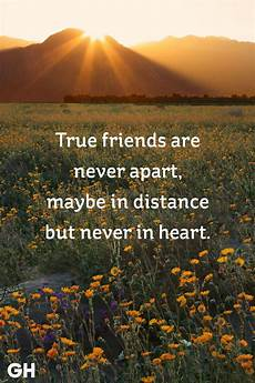 Free Friendship Quote