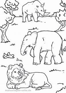 malvorlage tiere afrika kostenlose ausmalbilder
