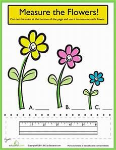 ruler measurements measure the flowers ruler measurements ruler worksheets