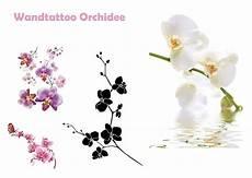 wandtattoo orchidee wandtattoo orchidee lila wei 223