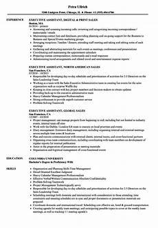 sales executive assistant resume sles velvet