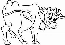 kuh ausmalbild kuh clipart malvorlagen tiere kuh bilder