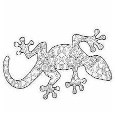 image result for printable lizard mandalas mandala coloring books mandala coloring