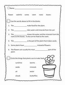 the plant world abeka 2nd grade plant worksheets study