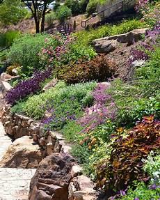 steilen hang bepflanzen landscaping on a slope hgtv