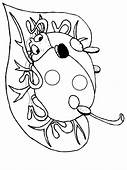 Ladybugs 10 Animals Coloring Pages Page & Book