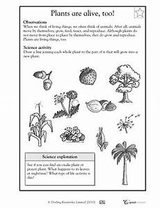 science worksheets about plants for grade 1 12109 plants are alive worksheets activities greatschools worksheets for 2nd grade