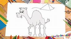 How To Draw A Camel My How To Draw