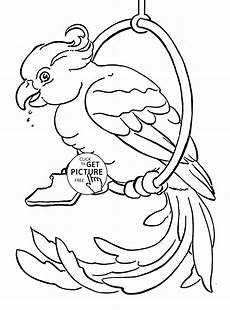 free coloring pages to print animals 17412 pet parrot coloring page for animal coloring pages printables free wuppsy animal