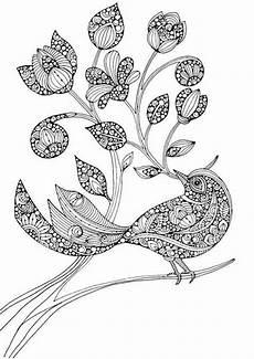 ausmalbilder erwachsene vogel x13 ein bild zeichnen