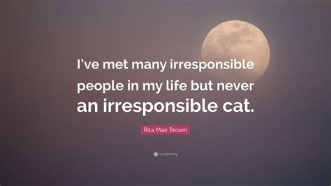 Irresponsible People Quotes