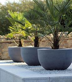 50 Modern Front Yard Designs And Ideas Modern Front Yard