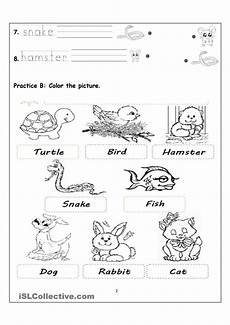 worksheets on animals for grade 1 14265 my pets