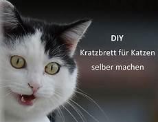 Diy Kratzbrett Aus Karton Katzenblog De Interessantes
