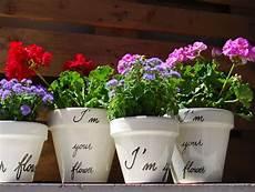 vasi in plastica colorati vasi da giardino in terracotta e plastica prezzi e modelli