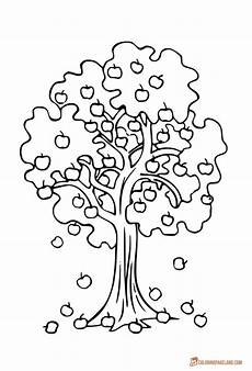 fruit tree coloring page at getcolorings free