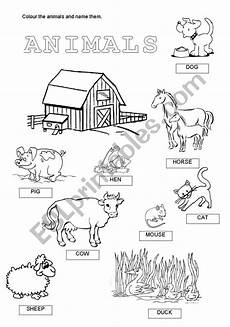 domestic animal worksheets 14291 domestic animals esl worksheet by anna22