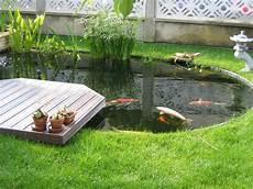 creation de bassin exterieur fascinant decoration bassin poisson exterieur zen deco