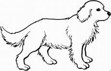 Malvorlage Hundewelpen Suesser Hund Mit Dickem Fell Ausmalbild Malvorlage