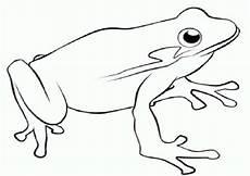 Ausmalbild Frosch Mandala Ausmalbilder Frosch Kostenlos Malvorlagen Zum Ausdrucken