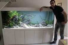 Biconeo Aquascaping Garnelen Aquarium Aquarium Und