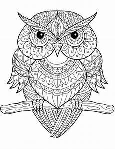 owl mandala malvorlagen malvorlagen color owl