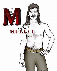 42 best mullets images on pinterest awkward family
