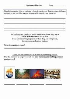 endangered animal worksheets 14298 endangered species worksheet teaching resources