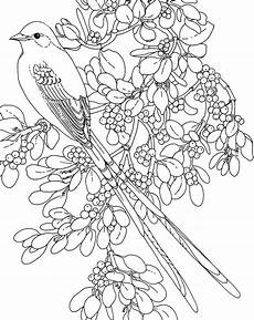 flower page printable coloring sheets and flower