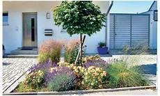 Pflegeleichter Garten Selbst De