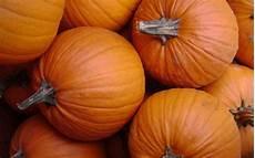 Orange Wallpaper Pumpkin