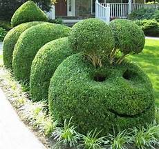 17 Best Images About Terrific Topiary Animals On
