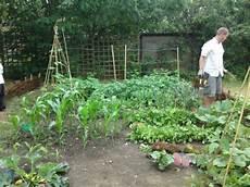 come realizzare un orto a bassa manutenzione guida giardino