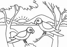 Malvorlagen Jungle Jungle Coloring Pages Coloring Pages To And Print