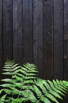 technique du bois brulé une maison o 249 l est ma 238 tre absolu noir cloture