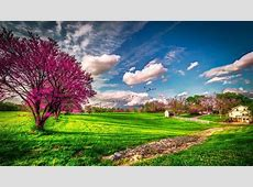31  HD Spring Wallpapers, Backgrounds, Images   Design