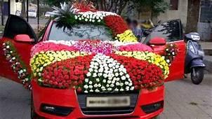 Car Decorator  Decoratingspecialcom