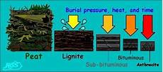 why do different types of coal have different composition
