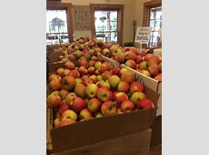 delicious orchards employment