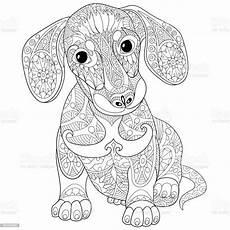 dackel welpe hund stock vektor und mehr bilder