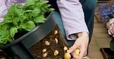 mein schöner garten gewinnspiel teilnahmebedingungen f 252 r das gardening gewinnspiel